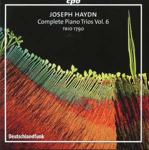 Haydn - Complete Piano Trios Volume 6