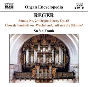 Reger - Organ Works Volume 5 Product Image