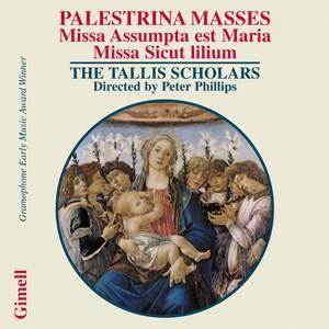 Palestrina - Masses