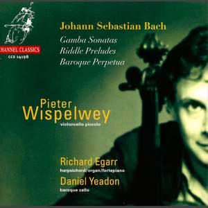 Pieter Wispelwey: Violoncello Piccolo