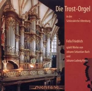 The Trost Organ in the Schlosskirche, Altenburg