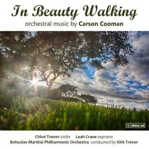 In Beauty Walking