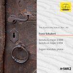 Schubert: Piano Sonatas Nos. 18 & 20