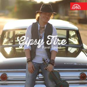 Gipsy Fire: Pavel Sporcl Product Image