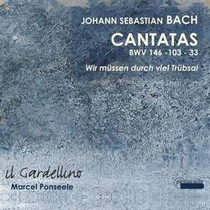JS Bach: Cantatas 146, 103 & 33
