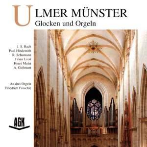 Ulmer Münster - Glocken und Orgeln