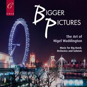 Bigger Pictures : the Art of Nigel Waddington
