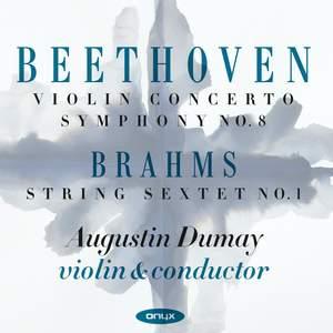 Beethoven: Violin Concerto & Symphony No. 8