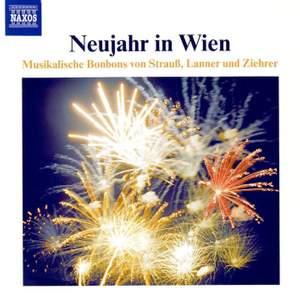 Neujahr in Wien