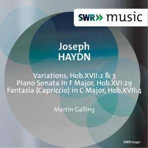 Haydn: Piano Music