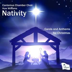 Nativity Product Image