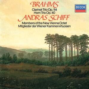 Brahms: Clarinet Trio & Horn Trio