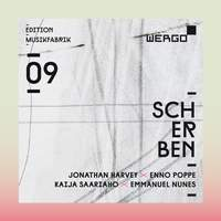 Scherben / Shards