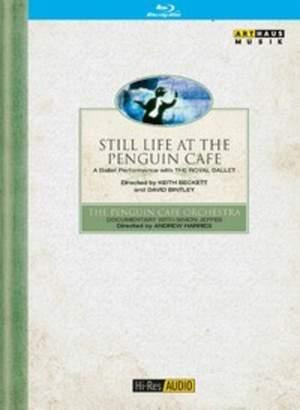 Still Life at the Penguin café