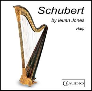 Schubert by Ieuan Jones