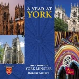 A Year at York