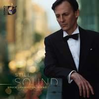 Bruce Levingston: Still Sound