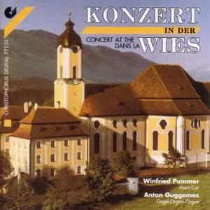 Horn Recital: Pummer, Winfried - HOMILIUS, G.A. / LOEILLET, J.-B. / RAVANELLO, O. / WALTHER, J.G. / ALADAW, M.I. / MARCELLO, B. (Concert at the Wies)