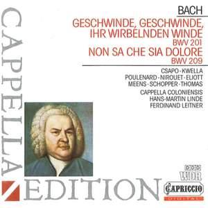 JS Bach: Geschwinde, ihr wirbelnden Winde