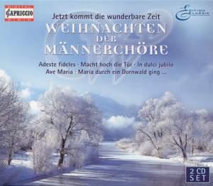 CHRISTMAS CHORAL MUSIC - DUBINSKY, F. / BORTNIANSKY, D. / SCHUBERT, F. / SCHEMELLI, G. / SILCHER, F. / KLETKE, H. / VERSTOVSKIJ, A. Product Image