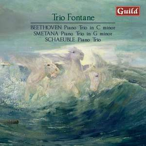 Beethoven, Smetana and Schaeuble: Trio Fontane