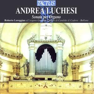 Andrea Lucchesi: Sonata per Organo Product Image