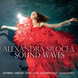 Alexandra Silocea: Sound Waves