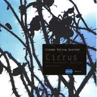 Cirrus - works by Ore, Bernhardt , Bratlie, Buene