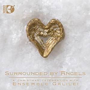 Surrounded by Angels Product Image