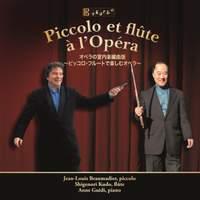 Piccolo et flûte à l'Opéra