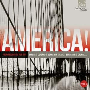 AMERICA! Volume 3: From Modern to Pop Art