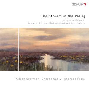 The Stream in the Valley