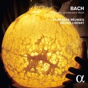 JS Bach: Sonatas, Chorales and Trios Product Image