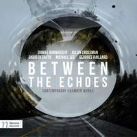 Between the Echoes