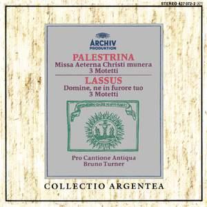Palestrina: Missa Aeterna Christi munera, Motets