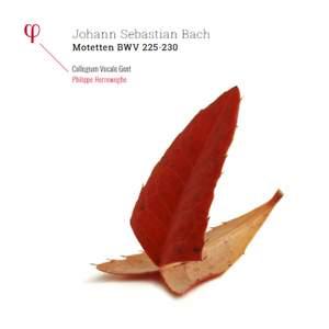 Bach: Motetten BWV 225-230 - Vinyl Edition