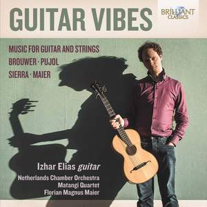Guitar Vibes