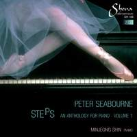 Peter Seabourne: Steps Volume 1