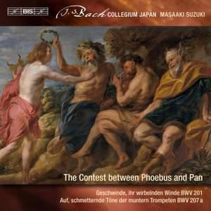 Bach - Secular Cantatas IX