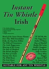 Dave Mallinson: Instant Tin Whistle Irish