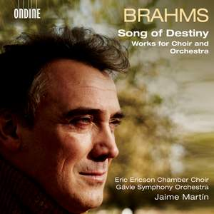 Brahms: Song of Destiny Product Image