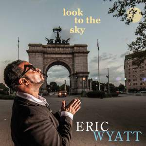 Look to the Sky Product Image