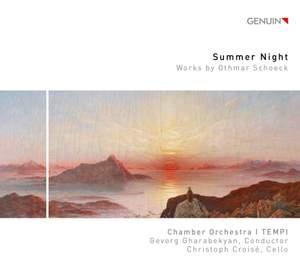 Summer Night Product Image