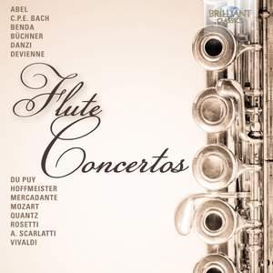 Flute Concertos Product Image