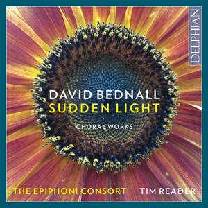 David Bednall: Sudden Light
