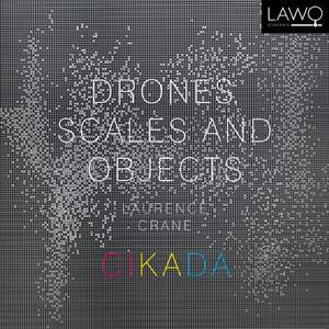 Crane: Drones, Scales and Objects