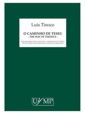 Luís Tinoco: O Caminho De Teseu
