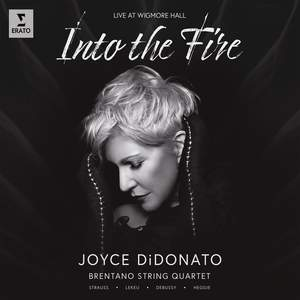 Into the Fire Product Image