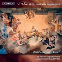 Bach - Secular Cantatas X