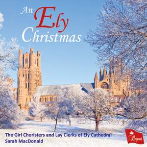 An Ely Christmas Product Image